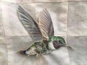Cardboard hummingbird